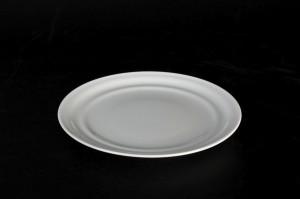 1306 plate d=19,5